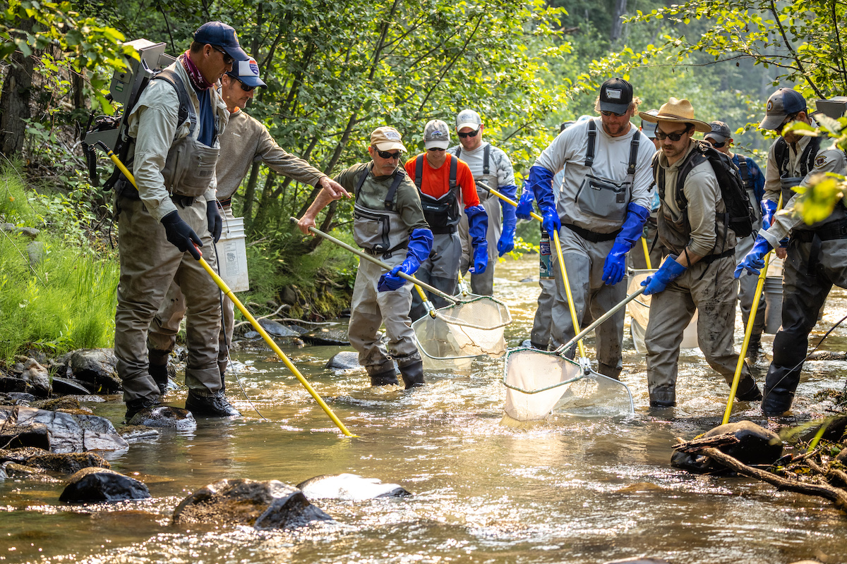 Watch Veterans with Warriors & Quiet Waters on Ninemile Creek for our First-Ever Conservation FX